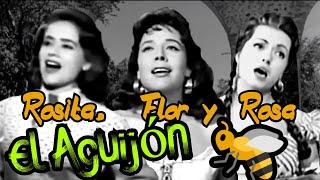Rosita Quintana, Flor Silvestre y Rosa de Castilla - El aguijón