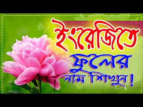 Flowers Name English To Bangla Word By IT Future.