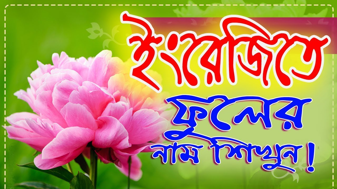 Flowers name english to bangla word by it future youtube flowers name english to bangla word by it future mightylinksfo