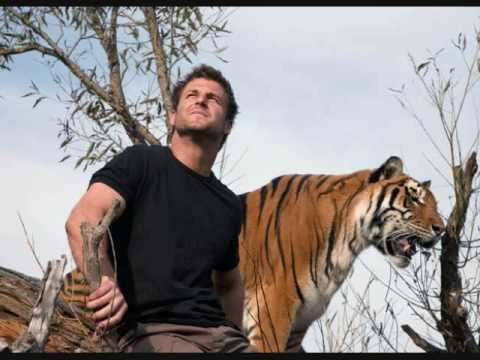 Dave Salmoni! Tiger vs LIons Opinion = Tigers wins. Dave Salmoni says tigers wins easily.