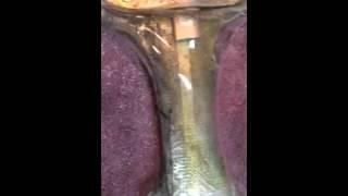 Thundarr Sun Sword