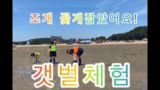 김애린 바닐라스타 가족 인천 영종도 마시안 갯벌체험 조…