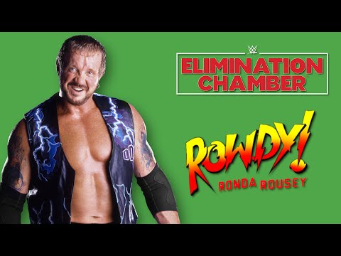 Diamond Dallas Page Interview - Elimination Chamber, Ronda Rousey & More