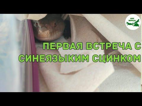 Знакомства в городе Южноукраинск. Сайт знакомств в