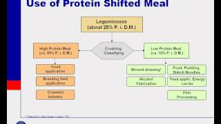 Protein Shifting & Starch Activatio