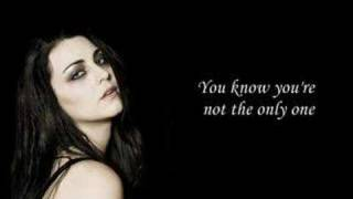 the only one evanescence the open door