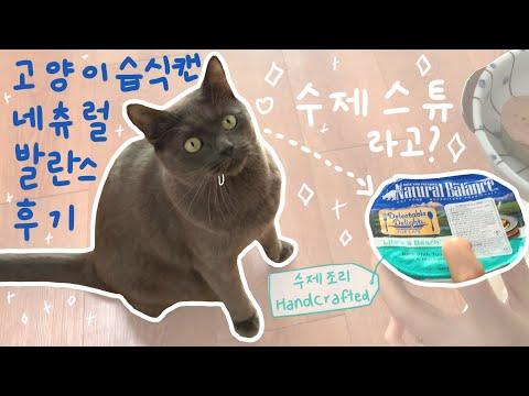 고오급 수제 습식 | 내추럴 발란스 | 스튜 포뮬러 | 고양이 주식캔/간식캔 리뷰 | 수제간식 | 후추로그