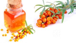облепиховое масло полезные свойства, облепиховое масло для лица,  облепиховое масло для волос