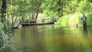 Секретные водоёмы Беларуси. Best fishing venues of Belarus.