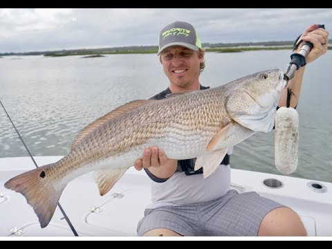 Catching INSHORE GIANTS Near Docks In Charleston South Carolina