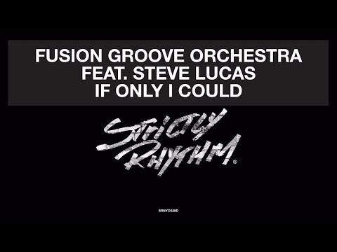 Fusion Groove Orchestra Feat. Steve Lucas - If Only I Could (Liem Remix) [Official Audio]
