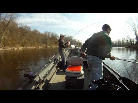 Steelhead Fishing - Grand River, Kent County, Michigan Fish 1 GoPro HD
