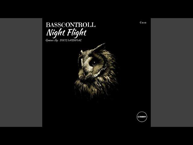 Night Flight (Duck Sandoval Remix)