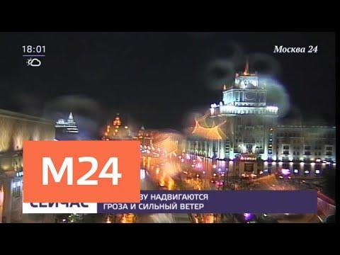 Гроза с сильным ветром ожидается в Подмосковье 12 августа - Москва 24