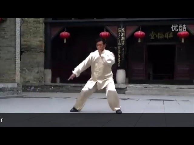 Liu Xiang Ying - Tai Chi style Chen Xiaojia Yilu