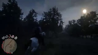 Red Dead Redemption 2 #41 Arthers got a Disease