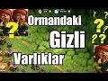 Clash of Clans SIRRI ÇÖZÜLDÜ - Ormandaki Gizli Varlıklar