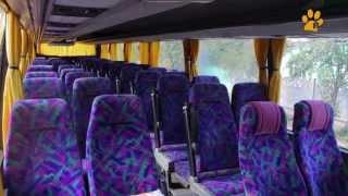 видео Автобусом к морю