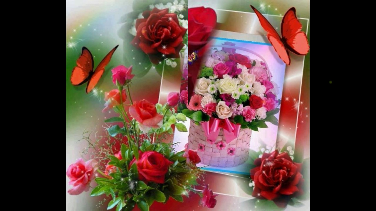 Good Morning Flowers For You,Good Morning Wishes,Greetings,Sms ...
