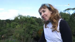 Experiencia Ambiental: Alicia en el jardín de las maravillas
