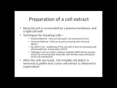 Purification of DNA from Living Cells Tutorial- For Gene Cloning Experiment