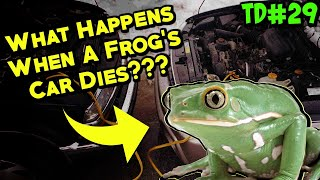 What Happens When A Frog's Car Dies??? [Two Dads #29]