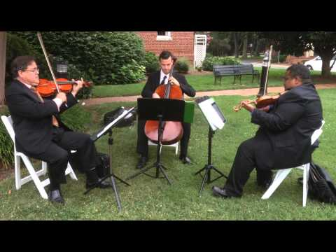 Bryan George Music Trio performs That's Amore