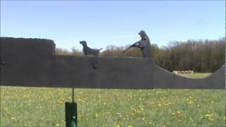 Pheasant Hunter Whirligig.wmv