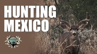 Headhunter Chronicles - Mexico