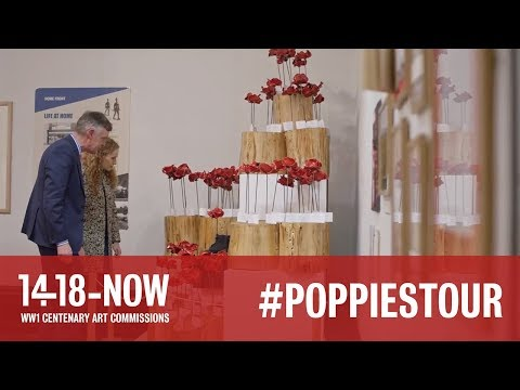 Where Are The Poppies Now - Hereford Cathedral Poppy Story: Hereford Cathedral School