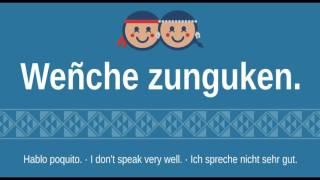 Frases Básicas del Mapudungun traducidas al Español, Inglés y Alemán