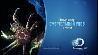 НОВЫЙ сезон | Смертельный улов | Discovery Channel