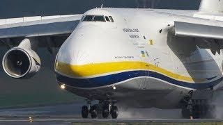 The 2nd - BIGGEST ANTONOV in the WORLD - Antonov An-124 LANDING (4k)
