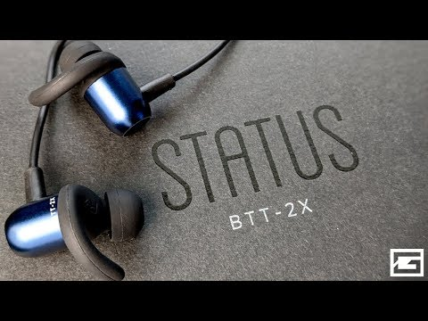 Dual Driver Wireless Earbuds : Status BT Transfer REVIEW