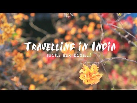 Intrepid Family Adventure - India
