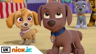 Paw Patrol | Best Friends: Skye & Zuma | Nick Jr. UK