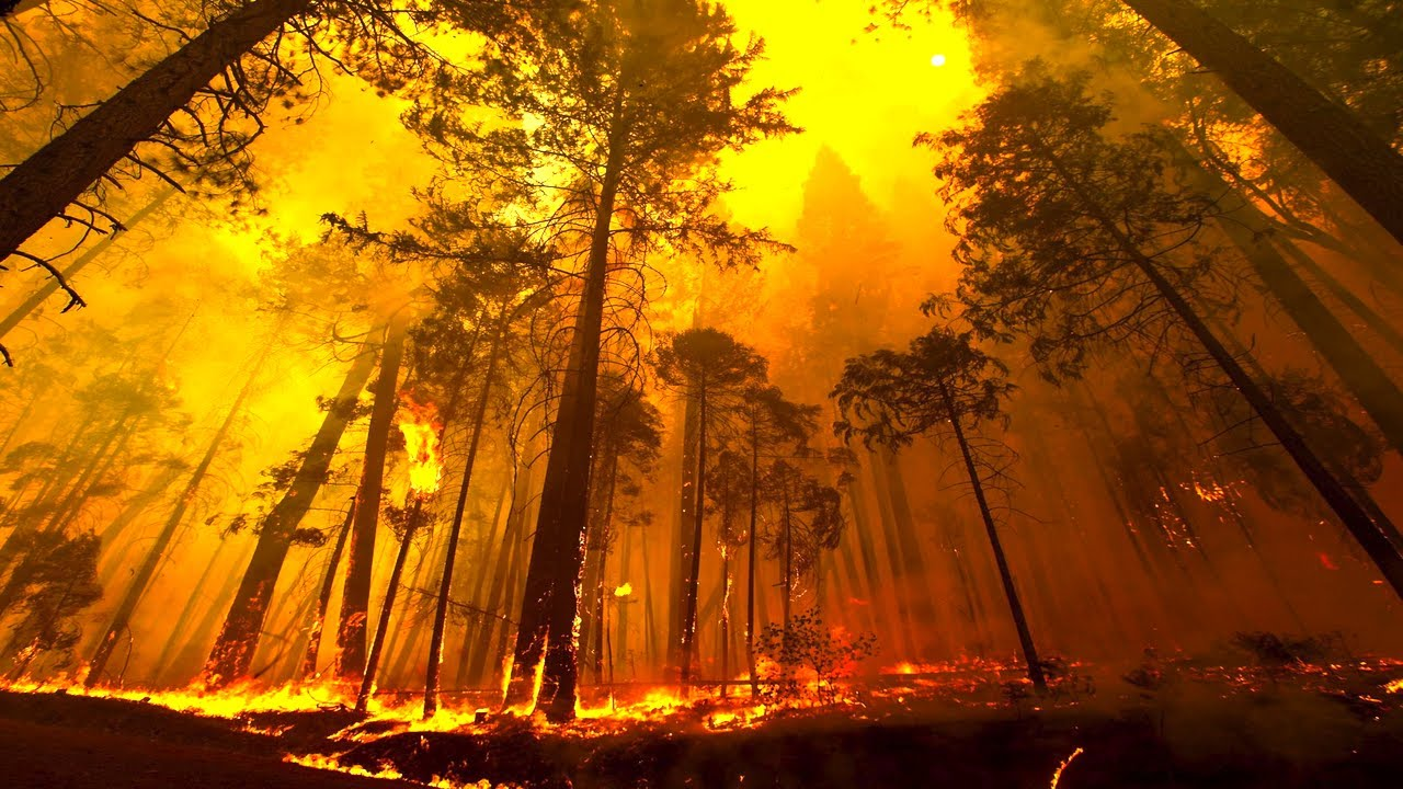 Yosemite Forest Fire Time Lapse And Flyover Youtube