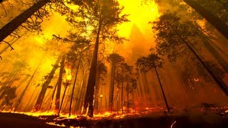 Yosemite Forest Fire Time Lapse and Flyover