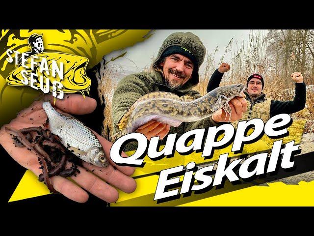 ANGELN auf Quappe EISKALT | WINTER Camping am Fluss | MIT Köderfisch und Tauwurm zur MEGA Quappe