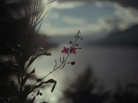 Hammock - Empty Page / Blue Sky