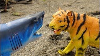 Мультфильмы про животных для детей. АКУЛЫ и ТИГРЫ, ЛЕВ и верные друзья и многие другие