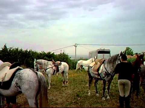 2009 06   III Passeio a Cavalo 0004