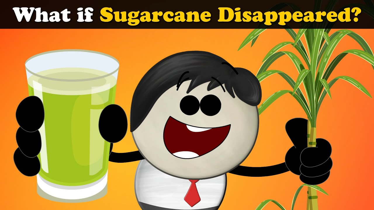 What if Sugarcane Disappeared? + more videos | #aumsum #kids #science #education #whatif