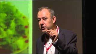 Um outro olhar sobre a alimentação: Pedro Moreira at TEDxBoavista
