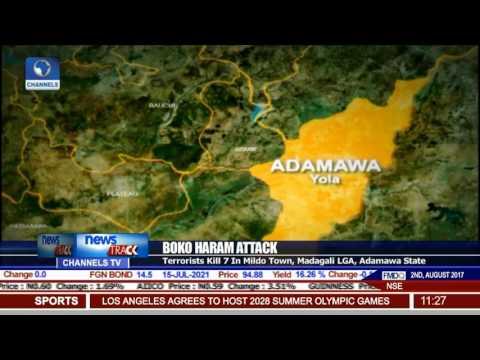 Boko Haram Attack: Terrorist Kill 7 In Madagali LGA, Adamawa State