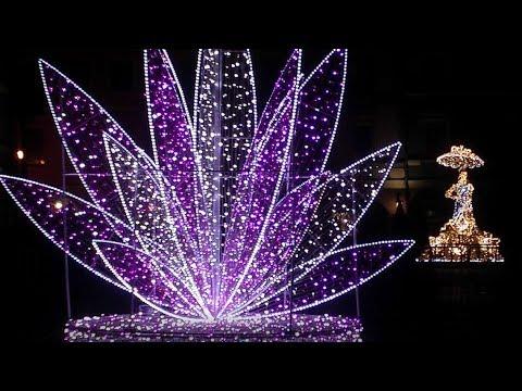 Zamość świetlny Ogród Wyobraźni