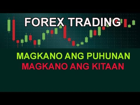 forex-trading-for-living-business-investment:-how-much-capital-and-profit