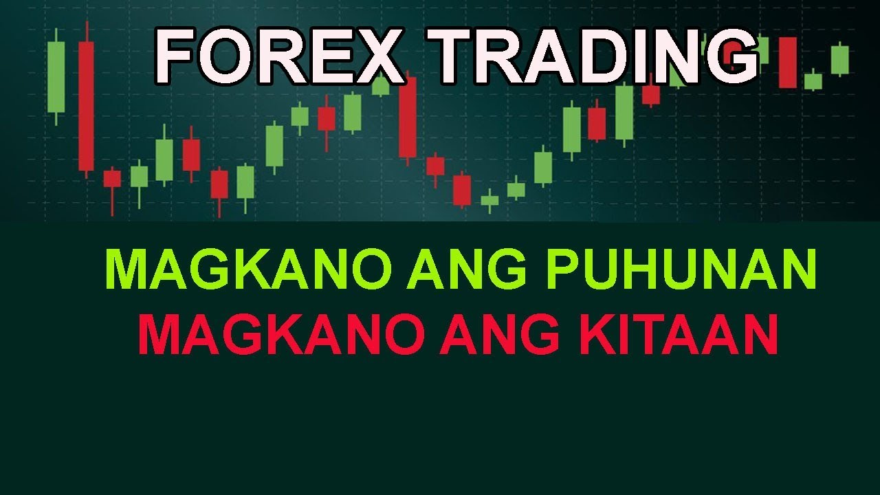 Forex Capital | INVESTMENTS