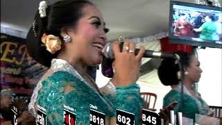 Download BAJING LUNCAT JURAGAN EMPANG TIADA GUNA GALA GALA Campursari BANYU BENING Live PACITAN