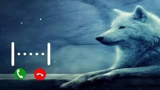 احلي رنة هاتف 2021 | نغمات رنين